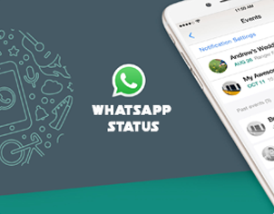 Whatsapp Status Downloader Android App ReadyMade